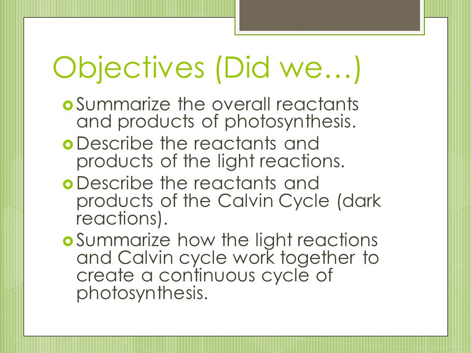 Objectives (Did we…) Summarize the overall reactants and products of photosynthesis. Describe the reactants and products of the light reactions.