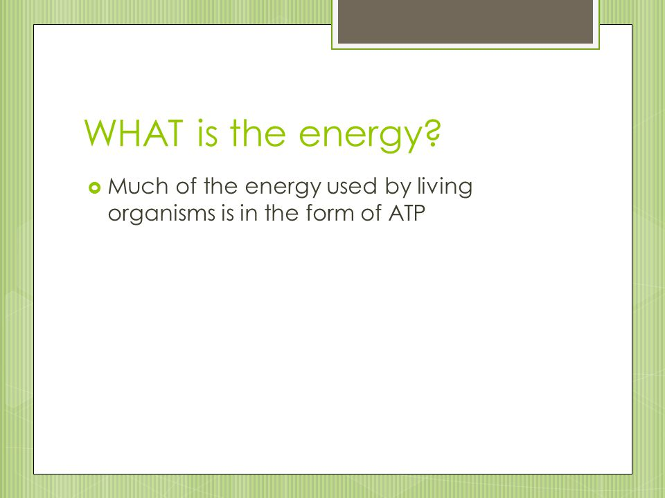 WHAT is the energy Much of the energy used by living organisms is in the form of ATP