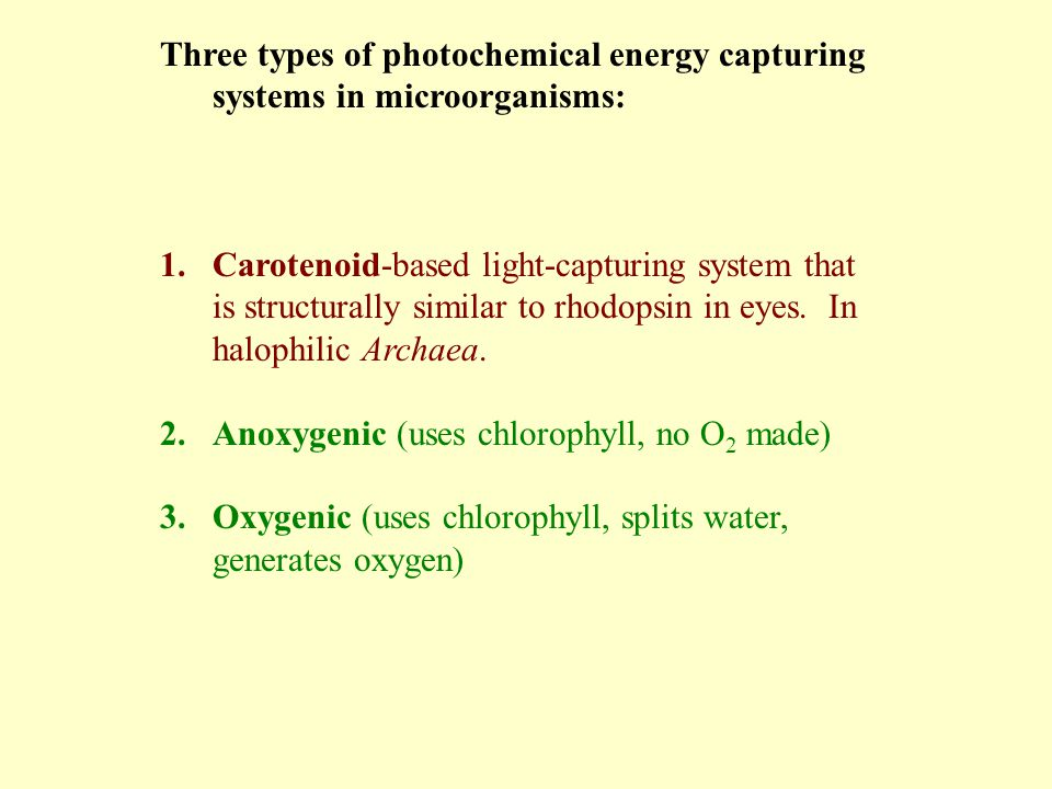 Three types of photochemical energy capturing systems in microorganisms: