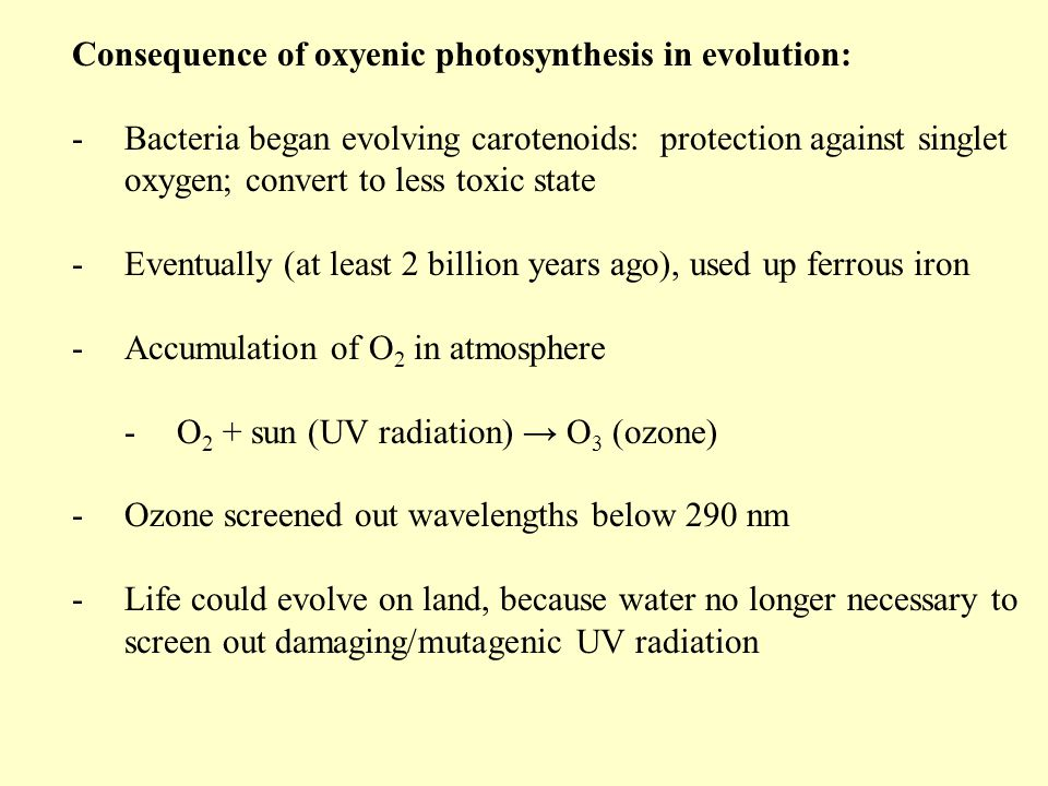 Consequence of oxyenic photosynthesis in evolution: