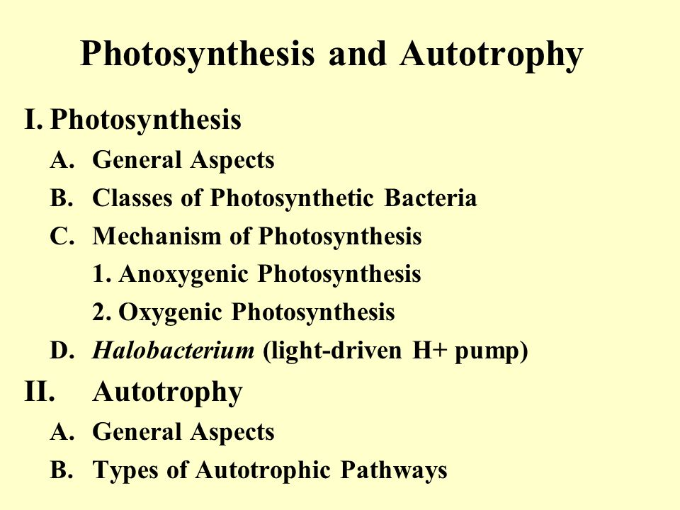 Photosynthesis and Autotrophy