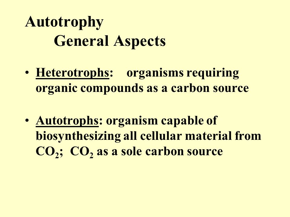 Autotrophy General Aspects