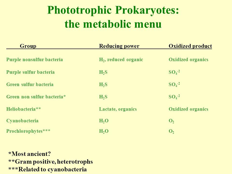 Phototrophic Prokaryotes: the metabolic menu