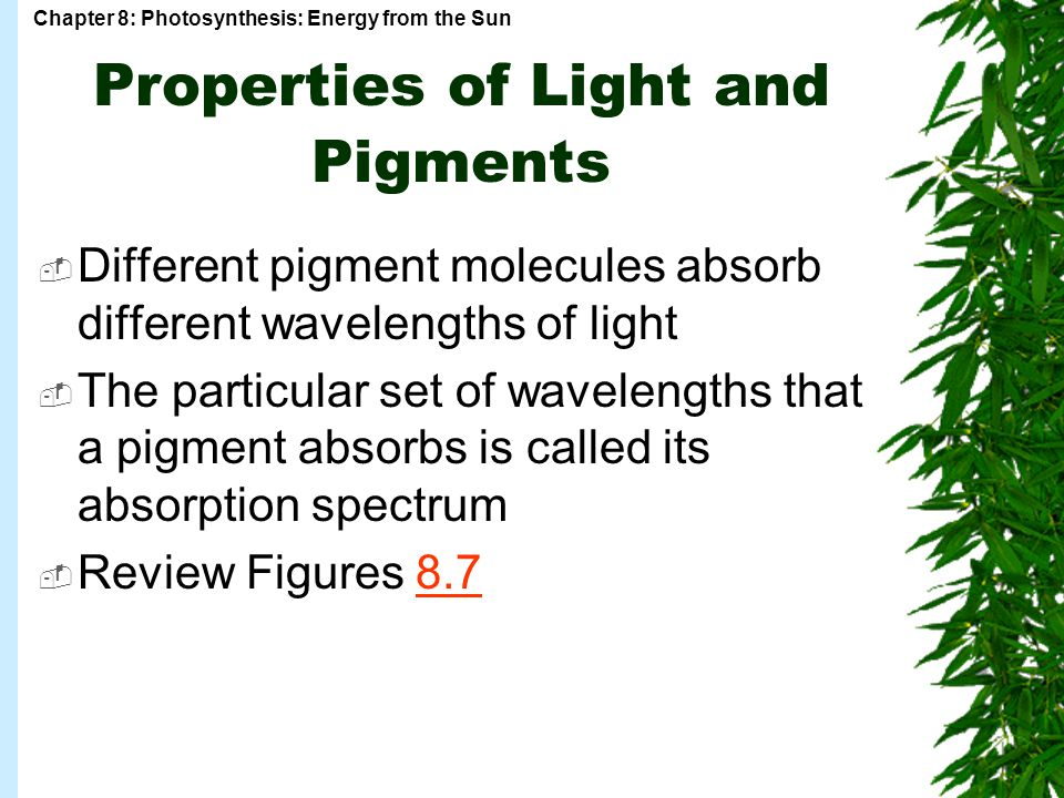 Properties of Light and Pigments
