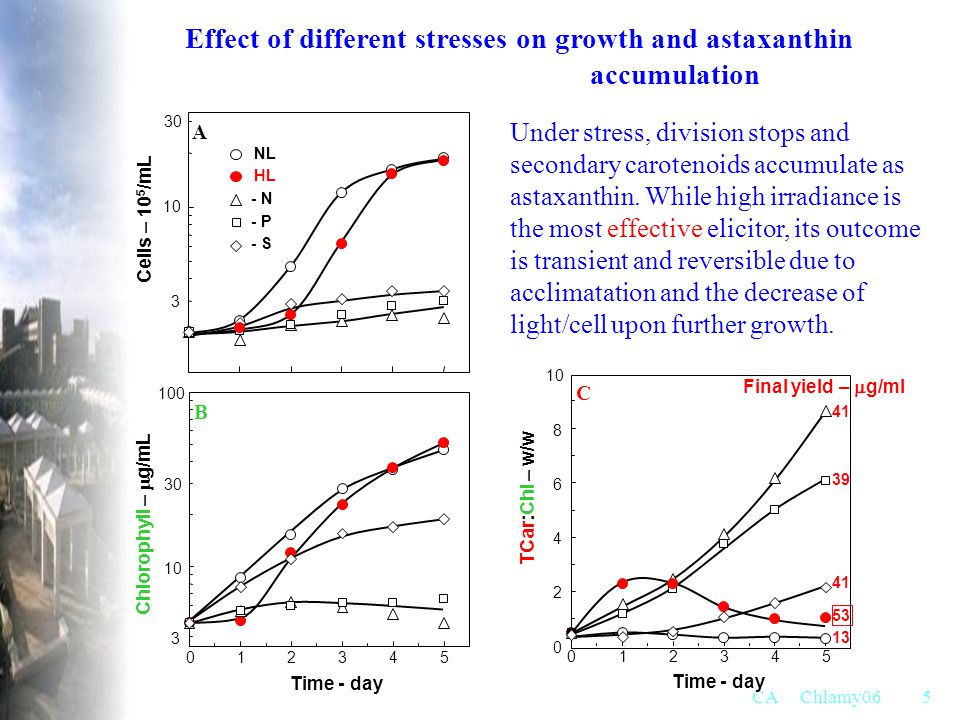 Effect of different stresses on growth and astaxanthin accumulation