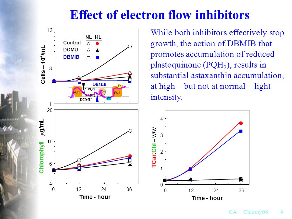 Effect of electron flow inhibitors