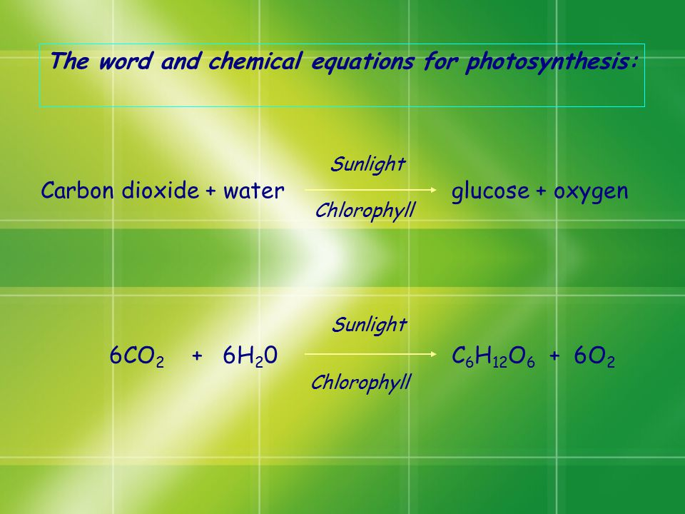The word and chemical equations for photosynthesis: