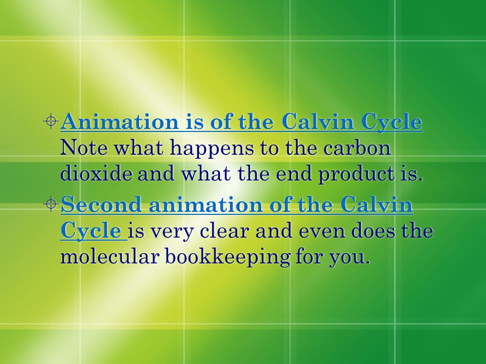 Animation is of the Calvin Cycle Note what happens to the carbon dioxide and what the end product is.