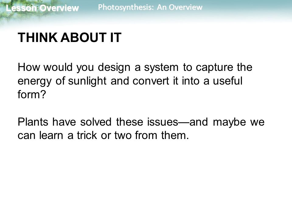 THINK ABOUT IT How would you design a system to capture the energy of sunlight and convert it into a useful form