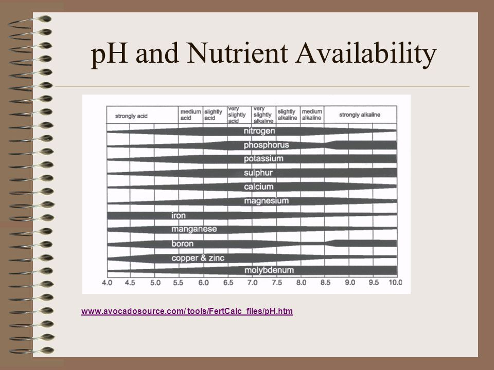 pH and Nutrient Availability