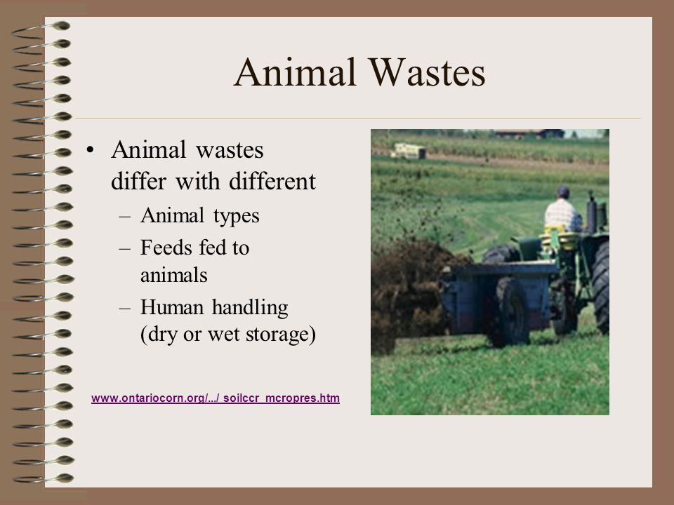 Animal Wastes Animal wastes differ with different Animal types