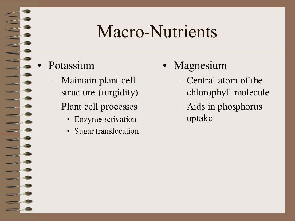 Macro-Nutrients Potassium Magnesium