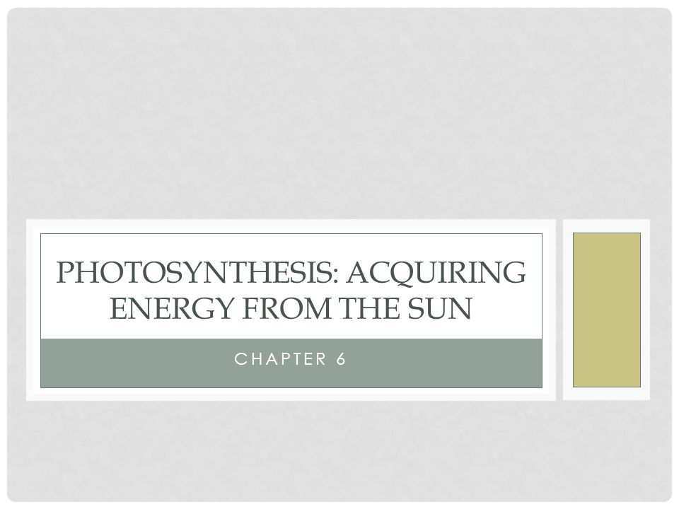 Photosynthesis: Acquiring energy from the sun