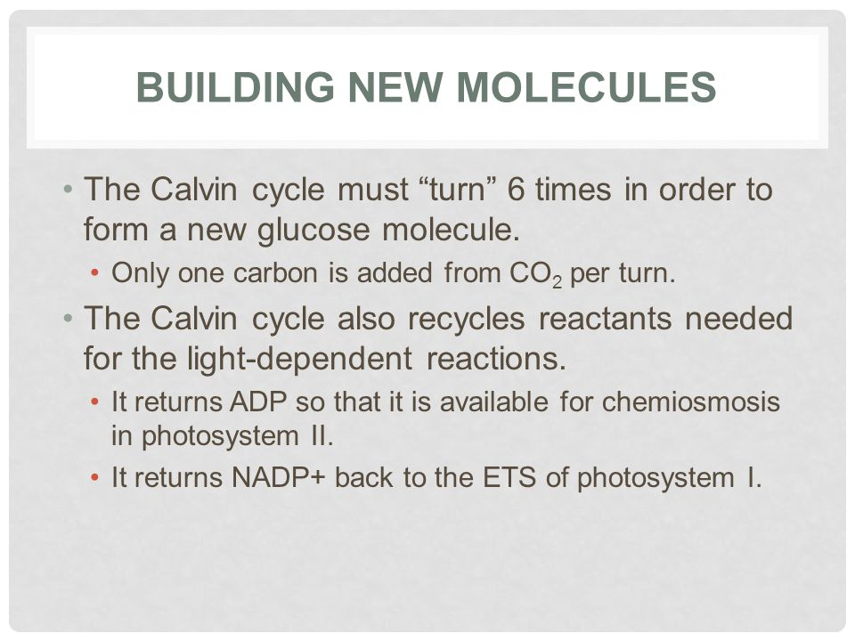 Building New Molecules