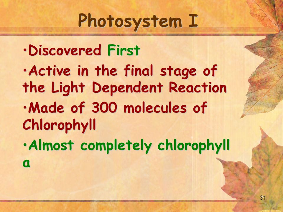 Photosystem I Discovered First