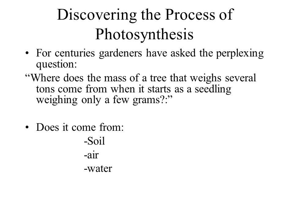 Discovering the Process of Photosynthesis