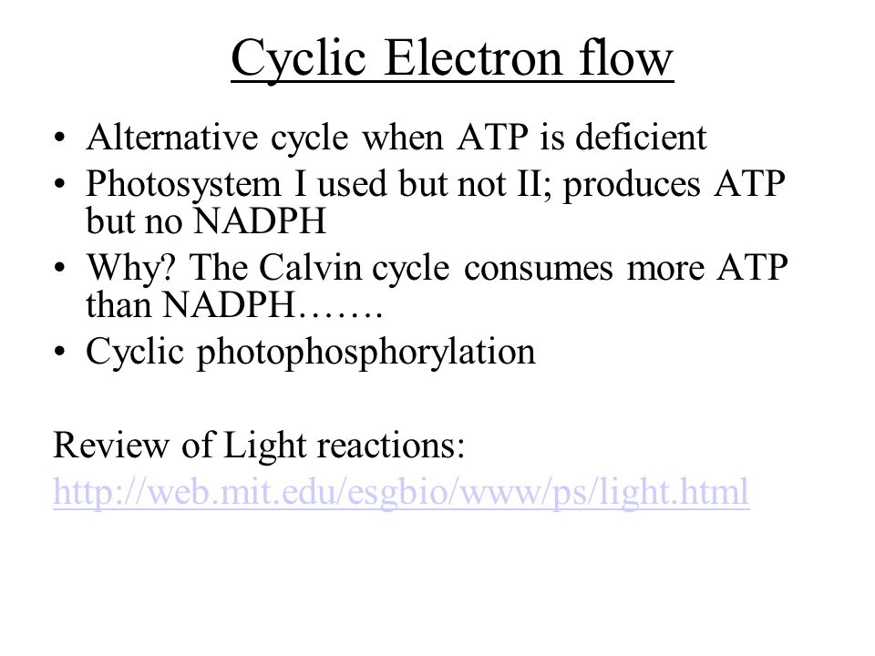 Cyclic Electron flow Alternative cycle when ATP is deficient