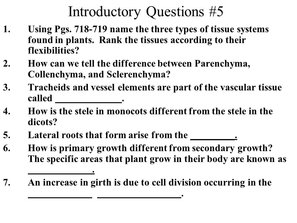 Introductory Questions #5
