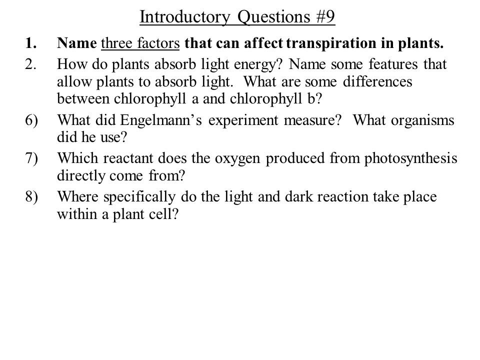 Introductory Questions #9