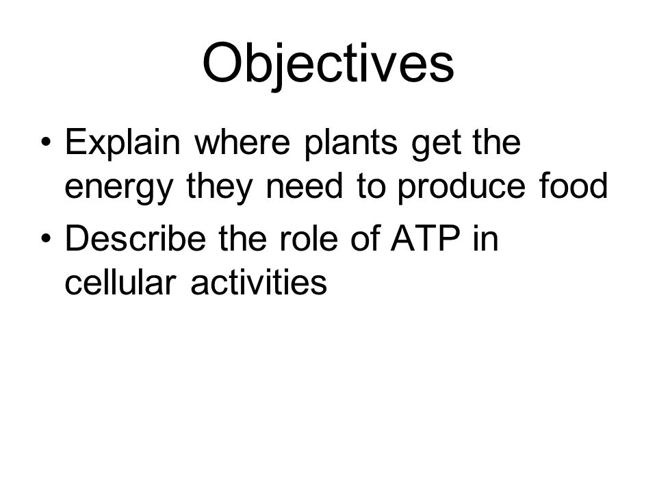 Objectives Explain where plants get the energy they need to produce food.