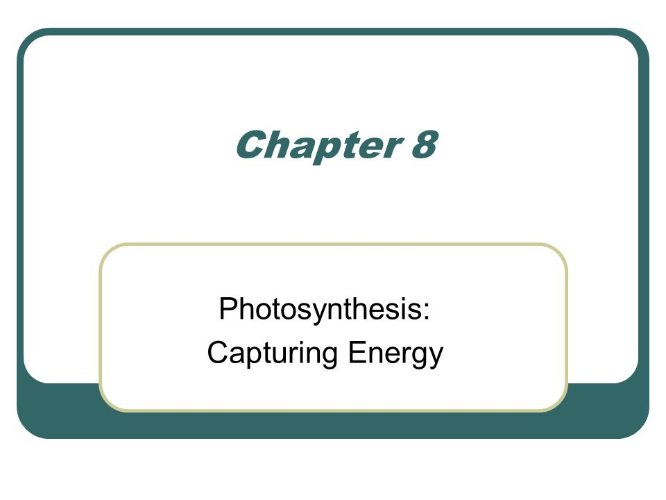 Photosynthesis: Capturing Energy