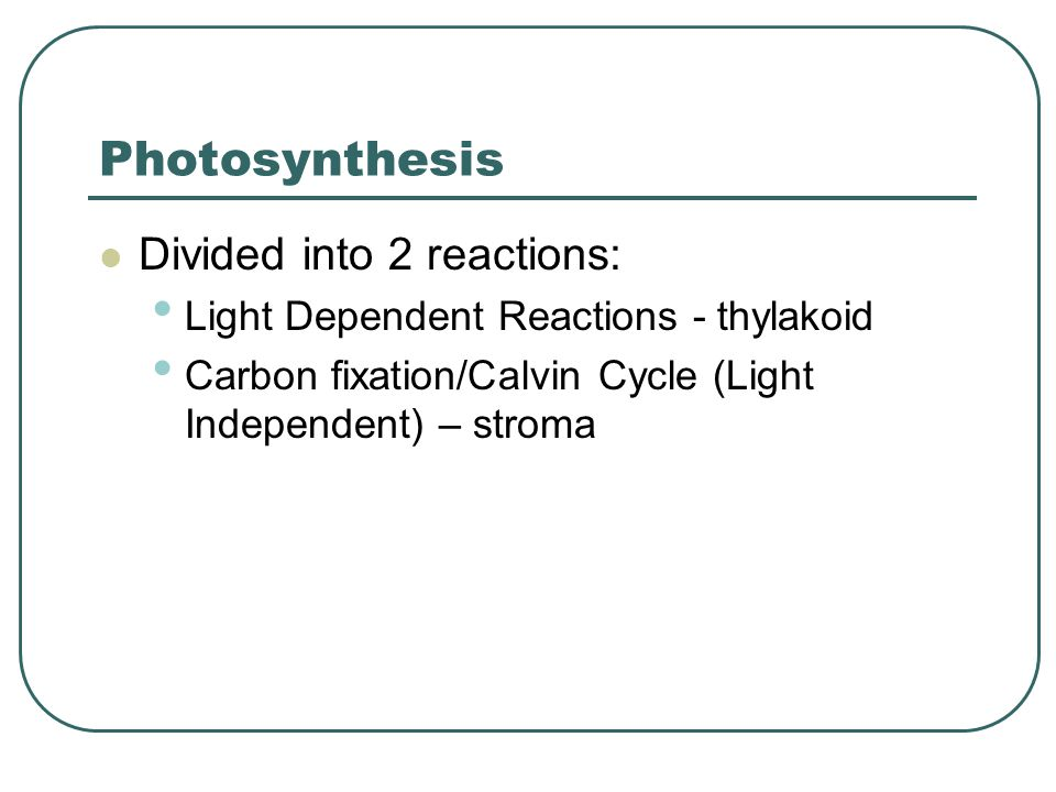 Photosynthesis Divided into 2 reactions: