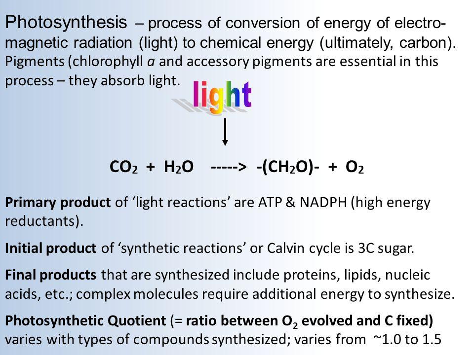 light CO2 + H2O -----> -(CH2O)- + O2