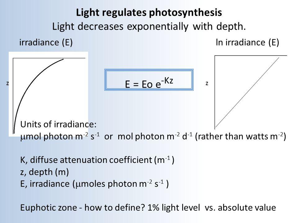 Light regulates photosynthesis