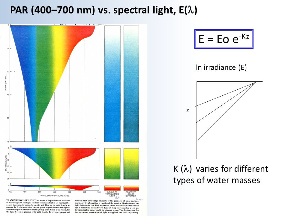 E = Eo e-Kz PAR (400–700 nm) vs. spectral light, E(l)