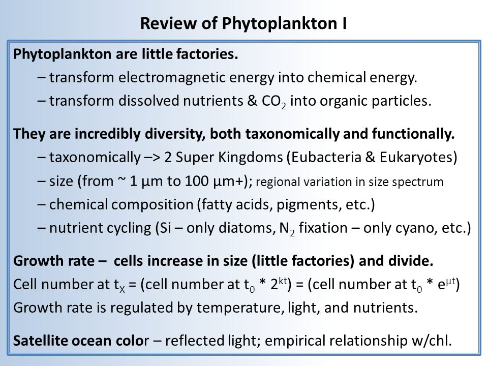 Review of Phytoplankton I