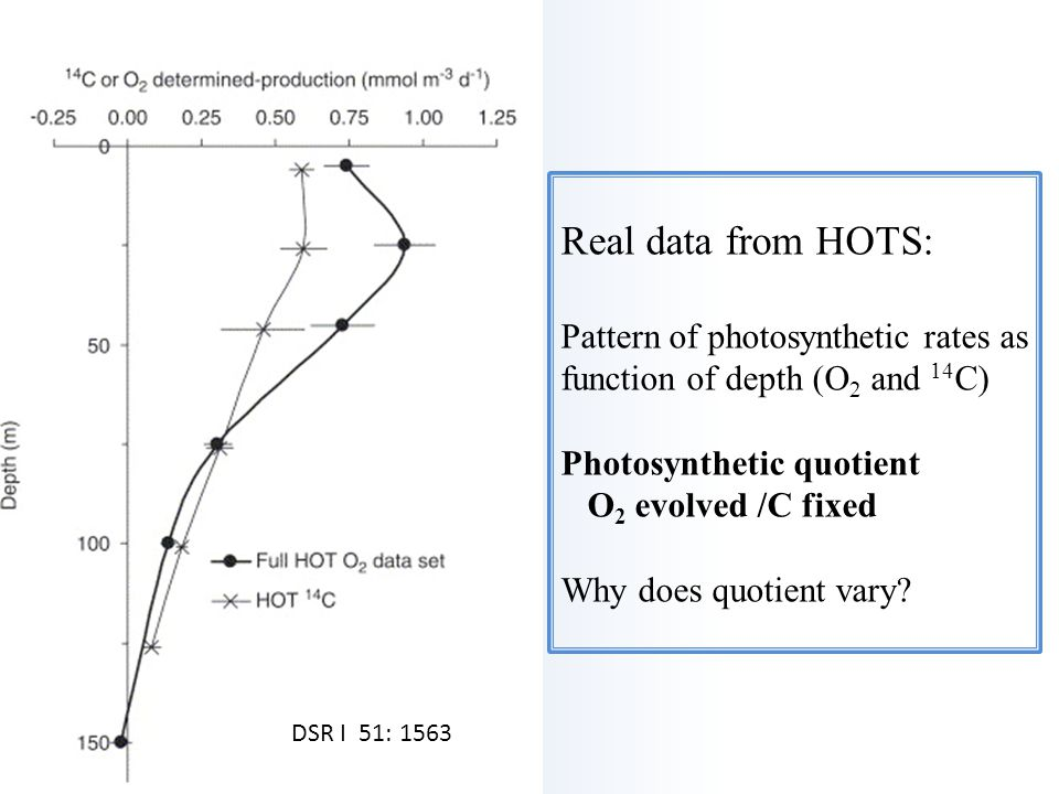 Real data from HOTS: Pattern of photosynthetic rates as function of depth (O2 and 14C) Photosynthetic quotient O2 evolved /C fixed Why does quotient vary