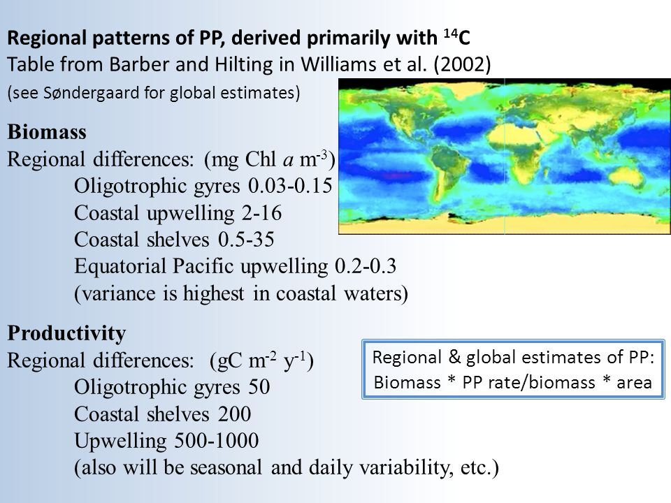 Regional patterns of PP, derived primarily with 14C Table from Barber and Hilting in Williams et al. (2002) (see Søndergaard for global estimates) Biomass Regional differences: (mg Chl a m-3) Oligotrophic gyres 0.03-0.15 Coastal upwelling 2-16 Coastal shelves 0.5-35 Equatorial Pacific upwelling 0.2-0.3 (variance is highest in coastal waters) Productivity Regional differences: (gC m-2 y-1) Oligotrophic gyres 50 Coastal shelves 200 Upwelling 500-1000 (also will be seasonal and daily variability, etc.)