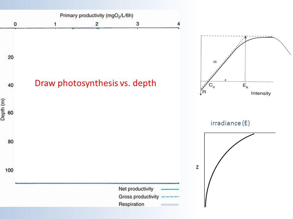 Draw photosynthesis vs. depth