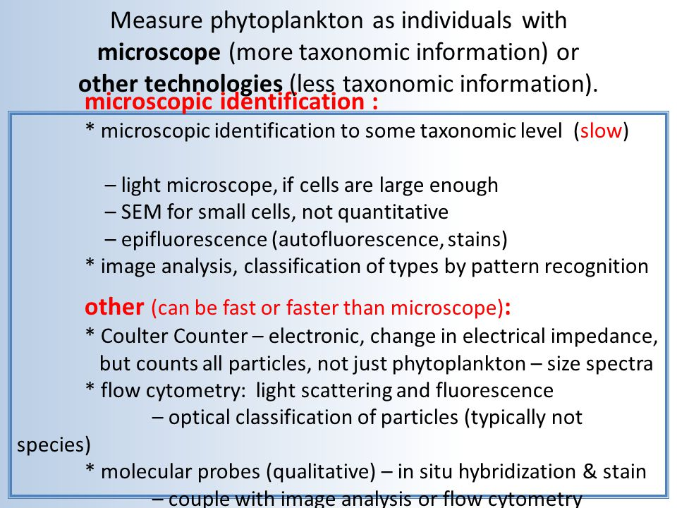 Measure phytoplankton as individuals with