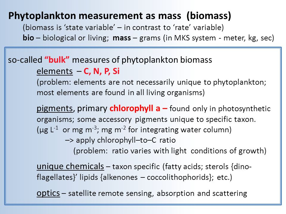 Phytoplankton measurement as mass (biomass)