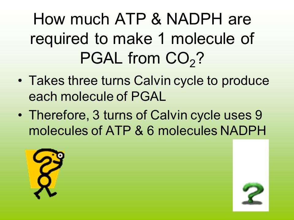 How much ATP & NADPH are required to make 1 molecule of PGAL from CO2