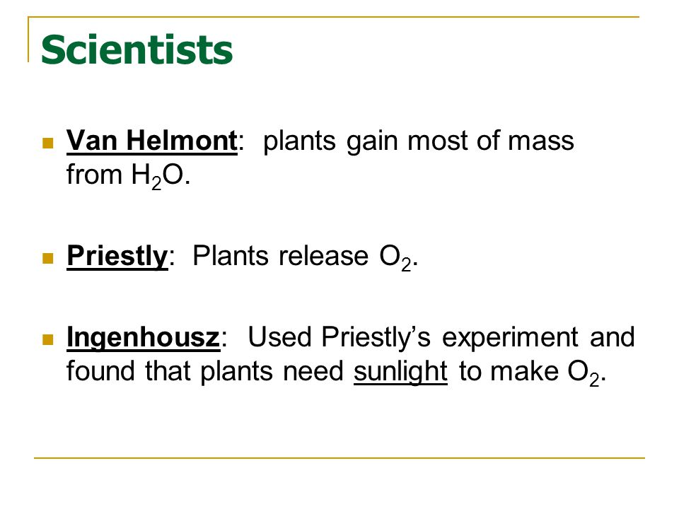 Scientists Van Helmont: plants gain most of mass from H2O.