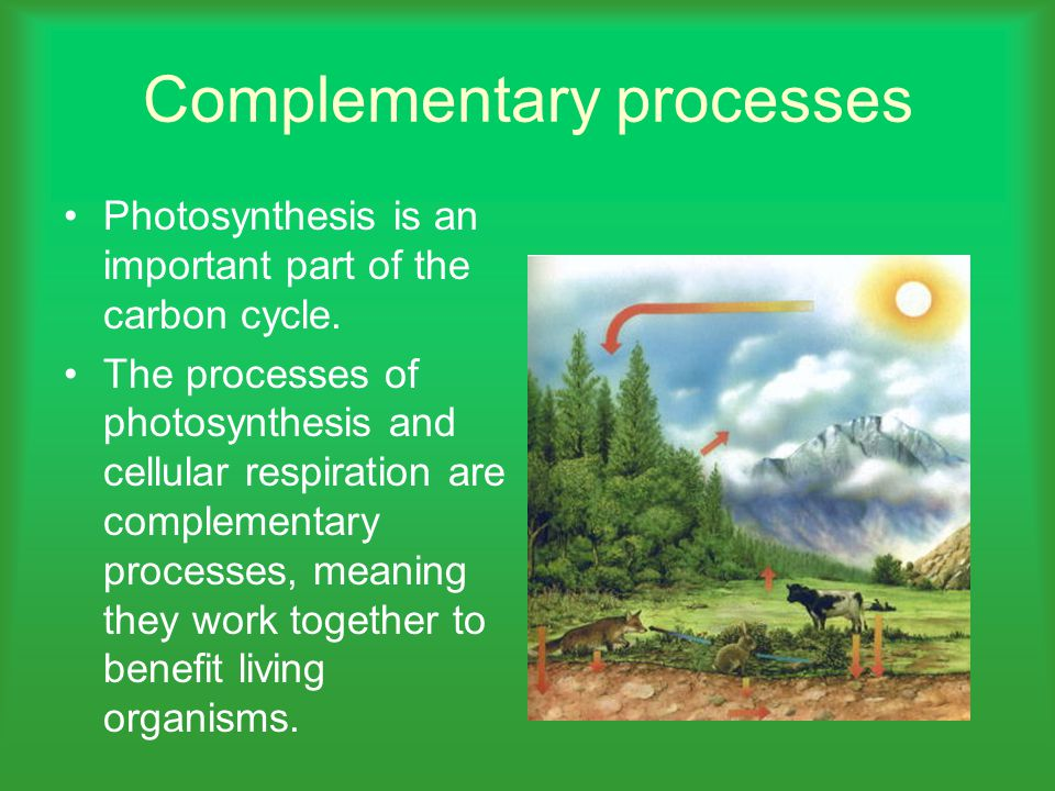 Complementary processes
