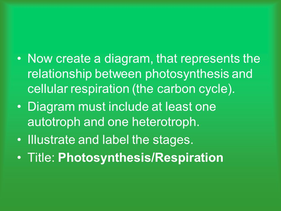 Now create a diagram, that represents the relationship between photosynthesis and cellular respiration (the carbon cycle).