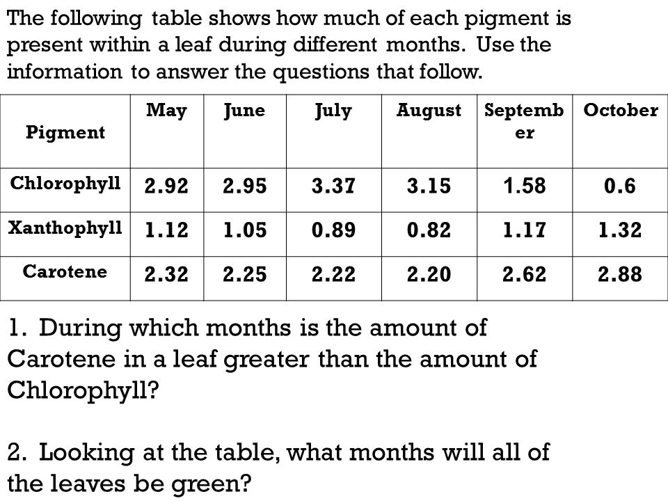 2. Looking at the table, what months will all of the leaves be green