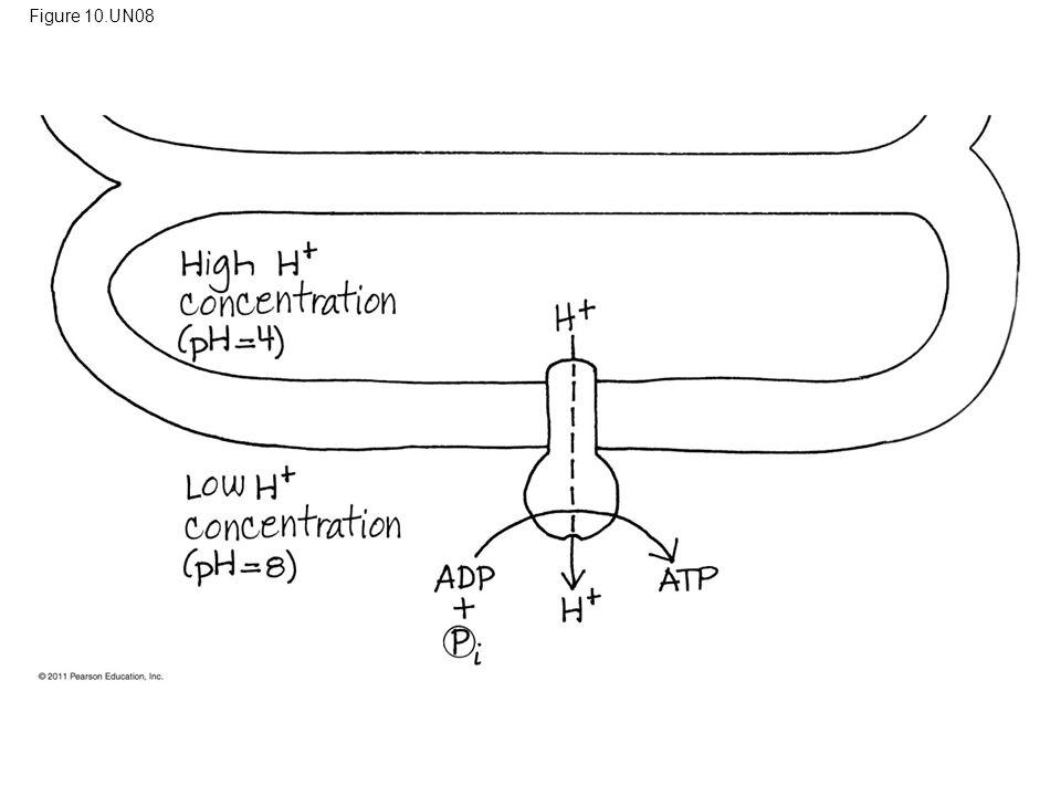 Figure 10.UN08 Figure 10.UN08 Appendix A: answer to Test Your Understanding, question 9 69