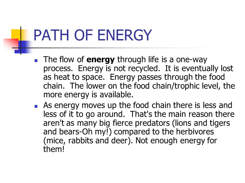 PATH OF ENERGY