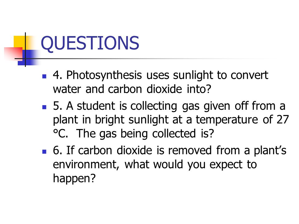 QUESTIONS 4. Photosynthesis uses sunlight to convert water and carbon dioxide into