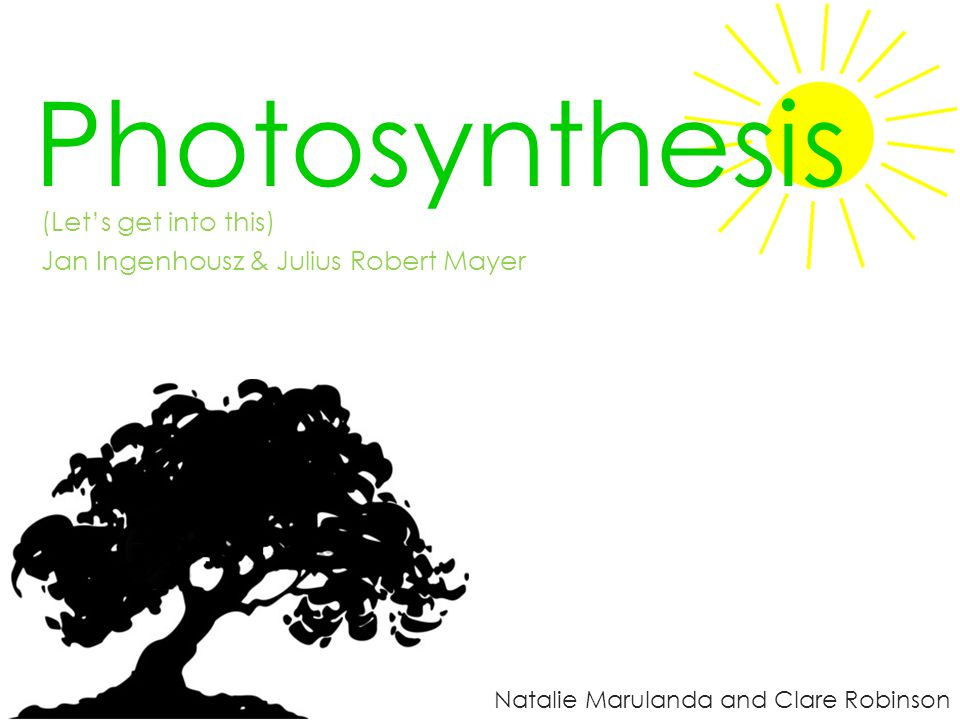 Photosynthesis (Let's get into this)