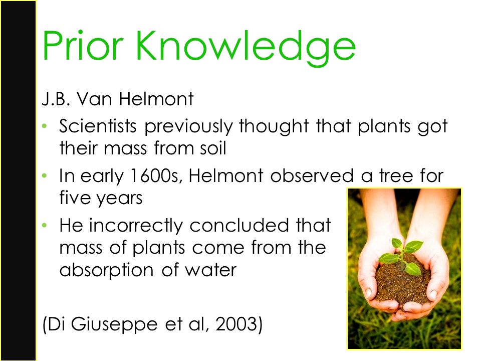 Prior Knowledge J.B. Van Helmont