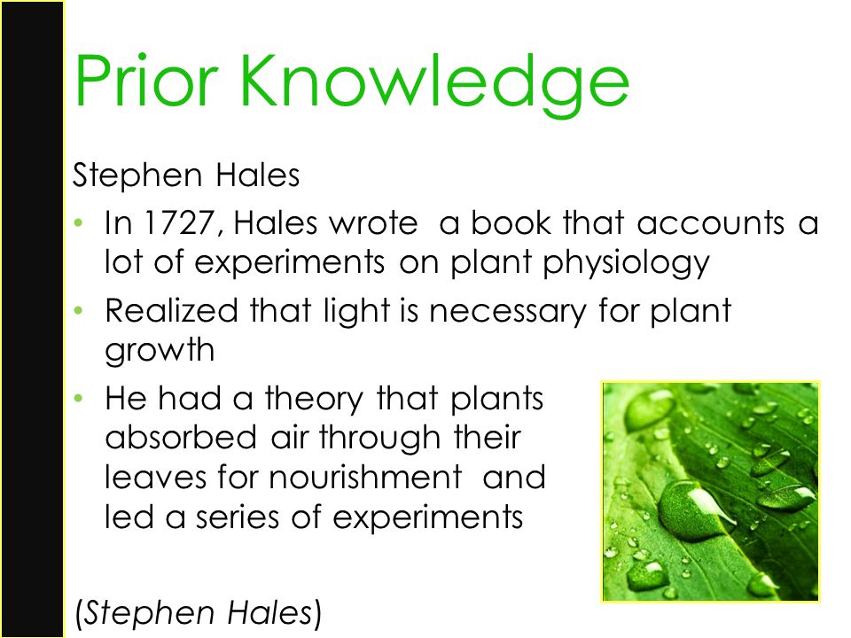 Prior Knowledge Stephen Hales
