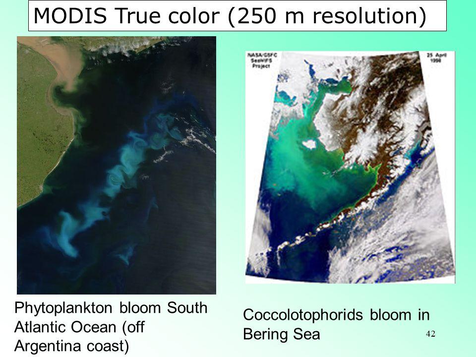 MODIS True color (250 m resolution)