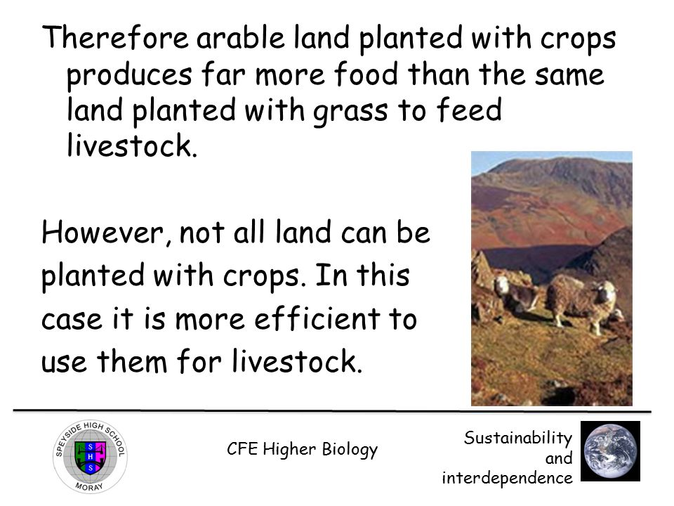 Therefore arable land planted with crops produces far more food than the same land planted with grass to feed livestock.