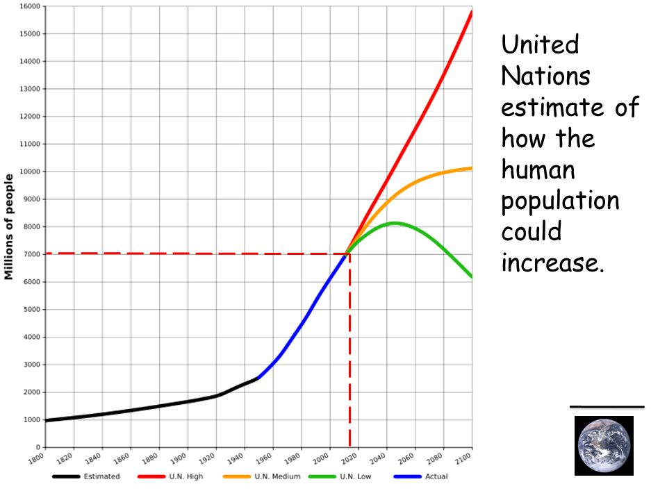 United Nations estimate of how the human population could increase.