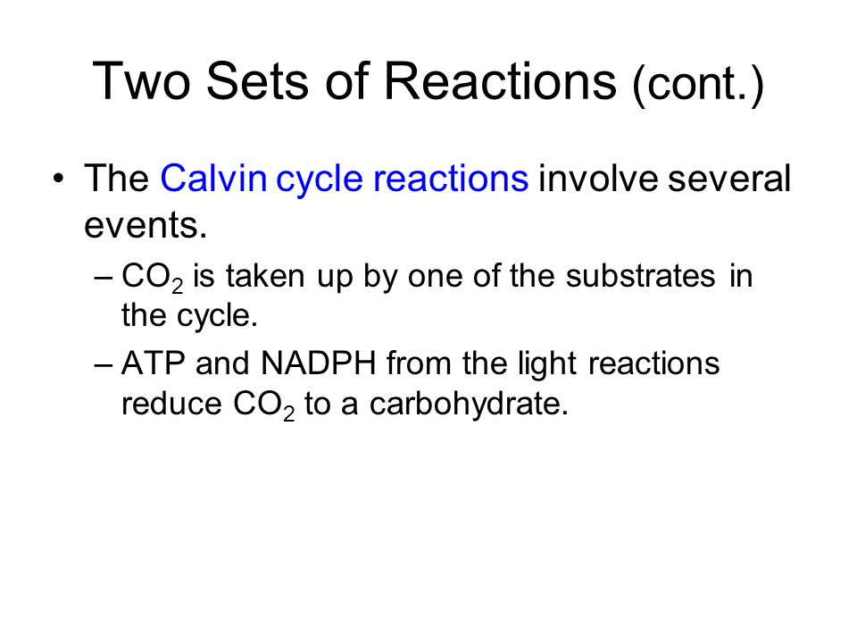 Two Sets of Reactions (cont.)